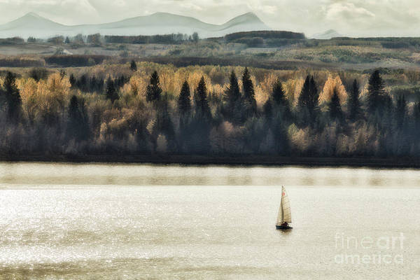 Photograph - Autumn Sail by Brad Allen Fine Art