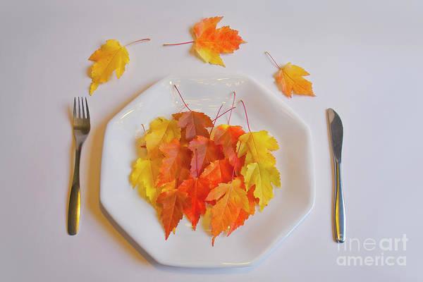 Salo Wall Art - Photograph - Autumn Salad by Veikko Suikkanen