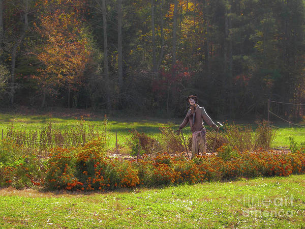 Photograph - Autumn Scarecrow by Dale Powell