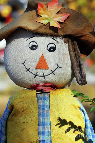 Photograph - Autumn Scarecrow by Jennifer Robin