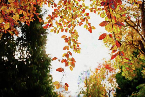 Painting - Autumn Scene 100 - Painting  by Ericamaxine Price