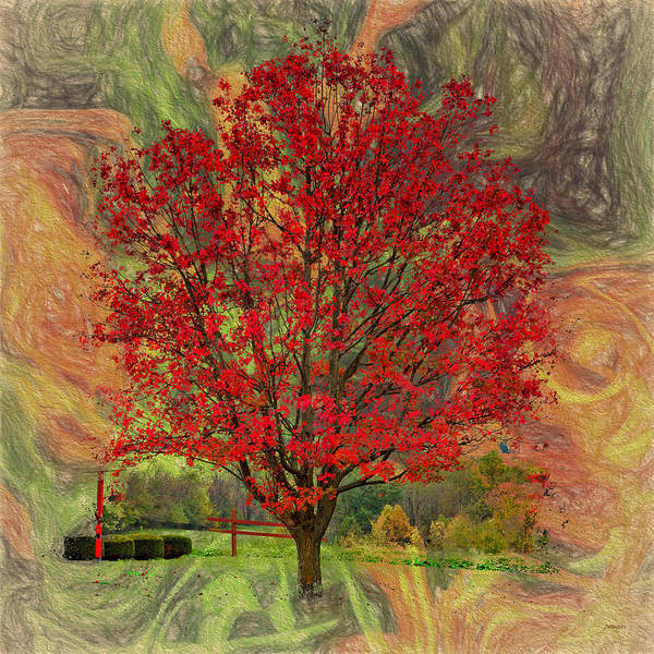 Photograph - Autumn Scenic by John M Bailey