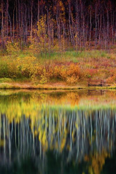 Photograph - Autumn Secrets by John De Bord