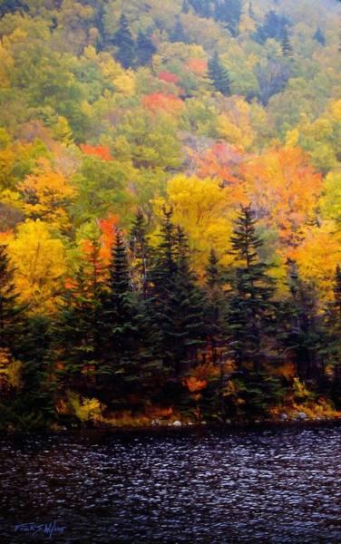 Photograph - Autumn Shore by Frank Wilson