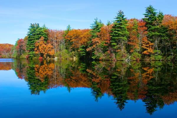 Photograph - Autumn Silence At Huntington by Polly Castor