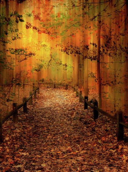 Photograph - Autumn Silkscreen by Jessica Jenney