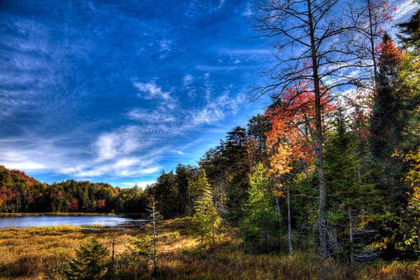 Photograph - Autumn Spendor On Fly Pond by David Patterson