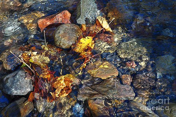 Wall Art - Digital Art - Autumn Splash by Diane E Berry