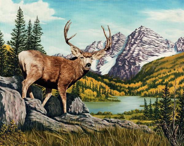 Mule Deer Wall Art - Painting - Autumn Splendor by Rick Bainbridge