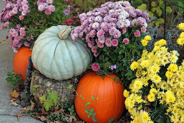 Pumkin Wall Art - Photograph - Autumn Still Life II by Suzanne Gaff