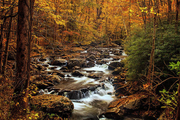 Wall Art - Photograph - Autumn Stream In The Smokies by Andrew Soundarajan