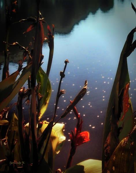 Photograph - Autumn Sun by Gerlinde Keating - Galleria GK Keating Associates Inc