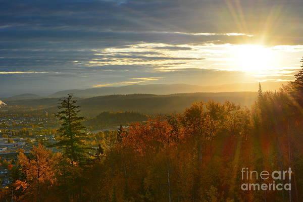 Photograph - Autumn Sun by Vivian Martin
