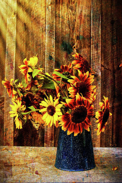 Autumn In New England Photograph - Autumn Sunflowers by Jeff Folger