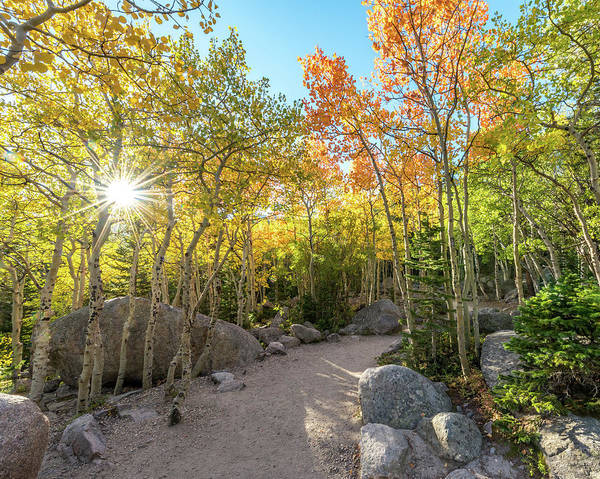 Photograph - Autumn Sunrise by Robert Yone