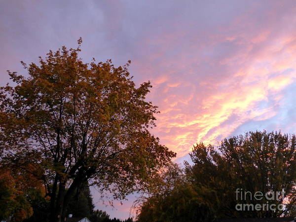 Photograph - Autumn Sunset 2 by Charles Robinson