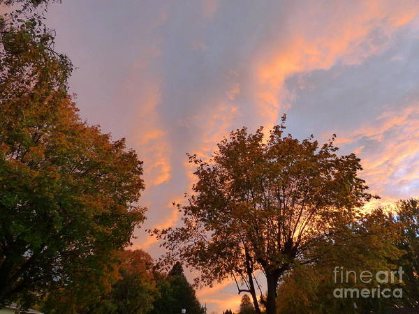 Photograph - Autumn Sunset by Charles Robinson