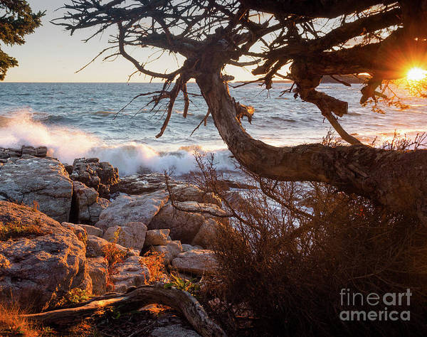 Photograph - Autumn Sunset, Ocean Point, East Boothbay, Maine  -230196 by John Bald