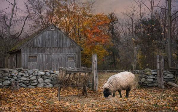 Autumn Sweater Art Print