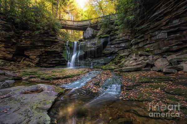 Photograph - Autumn Swirls  by Michael Ver Sprill