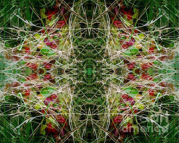 Painting - Autumn Symmetry 25 by David Hargreaves
