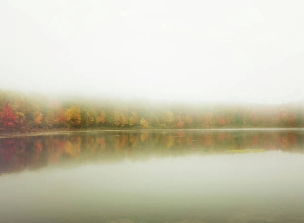 Photograph - Autumn Symmetry by Sue Collura