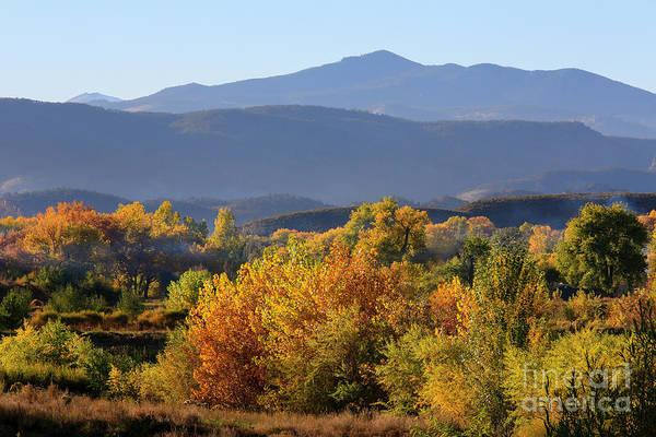 Photograph - Autumn Symphony by Jon Burch Photography