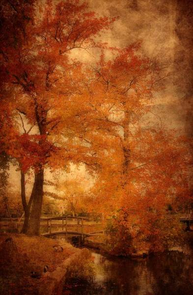 Photograph - Autumn Tapestry - Lake Carasaljo by Angie Tirado