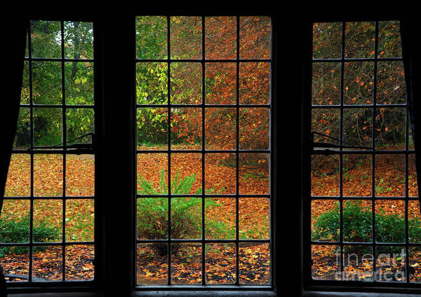 Photograph - Autumn Through The Window by Martyn Arnold