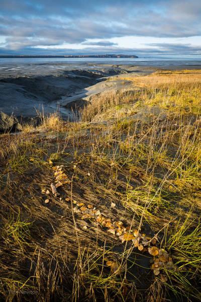 Photograph - Autumn Tide Line by Tim Newton