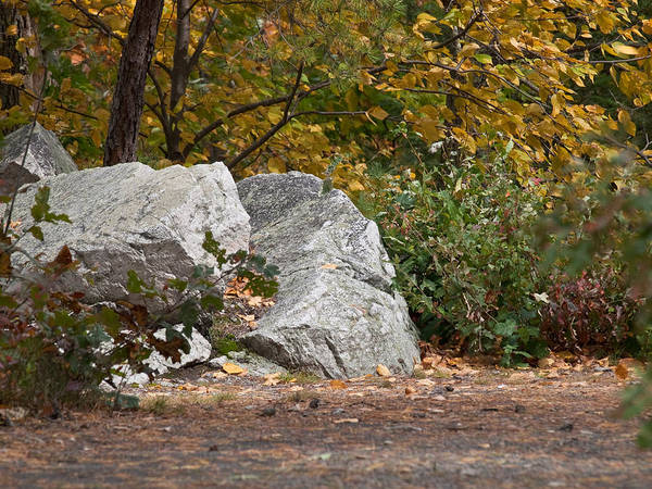Wall Art - Photograph - Autumn Trail by Jim DeLillo