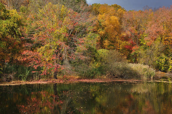 Photograph - Autumn Tranquility 1 by Frank Mari