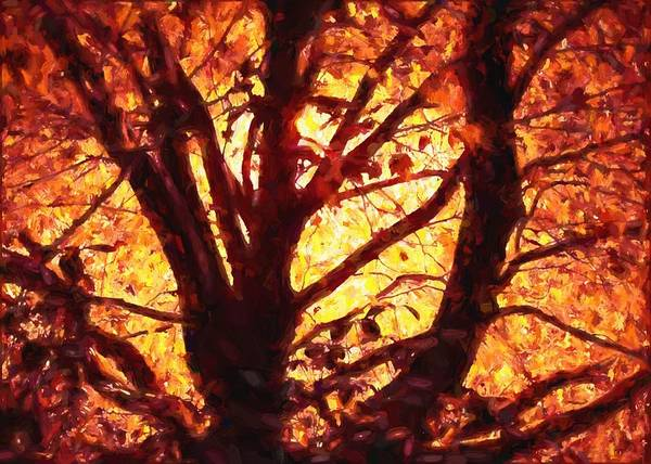 Digital Art - Autumn Tree by Charmaine Zoe