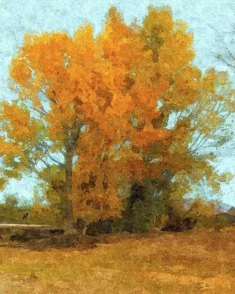 Digital Art - Autumn Trees By Pineview by David King