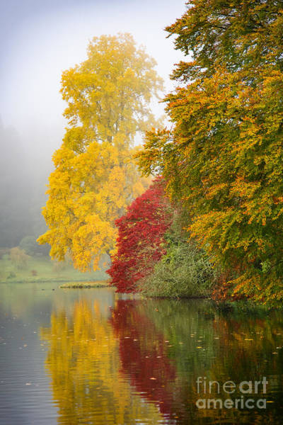 Photograph - Autumn Trees By The Lake by Colin Rayner