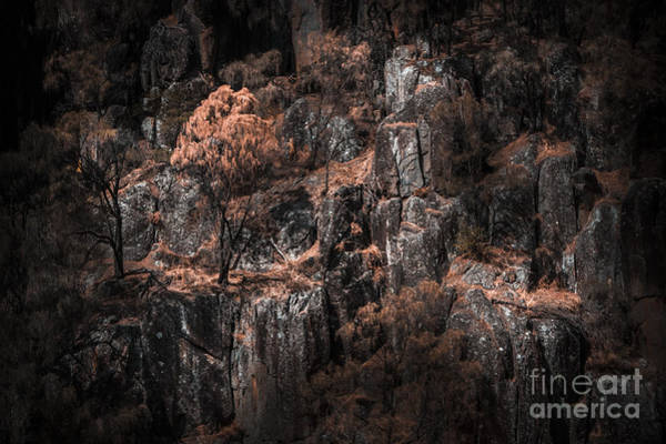 Crevice Photograph - Autumn Trees Growing On Mountain Rocks by Jorgo Photography - Wall Art Gallery