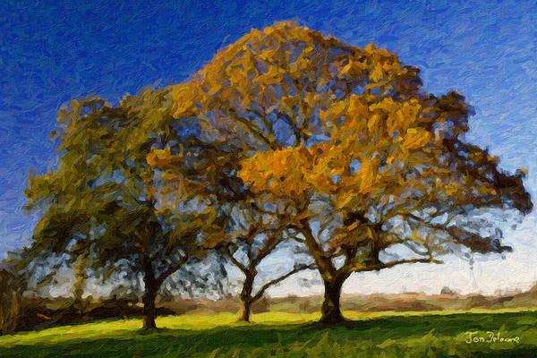 Fall Scenery Mixed Media - Autumn Trees by Jon Delorme