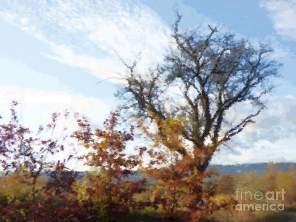 Fall Scenery Mixed Media - Autumn Trees by Miroslav Nemecek