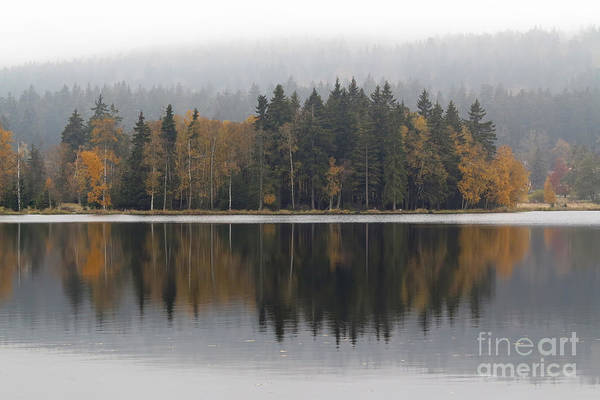 Woodland Wall Art - Photograph - Autumn Trees On The Lakeshore by Michal Boubin