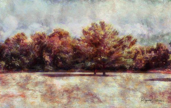 Photograph - Autumn Trees by Reynaldo Williams