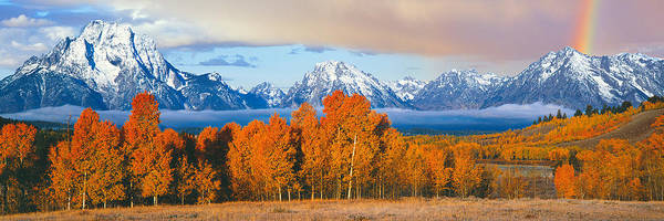 Oxbow Park Photograph - Autumn Trees With Mountain Range by Panoramic Images