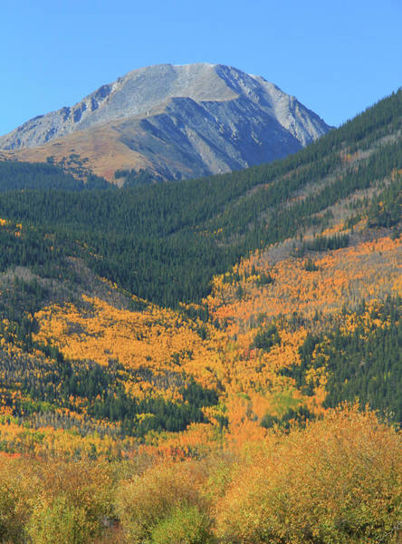 Photograph - Autumn Valley In Colorado Mountains by Dan Sproul