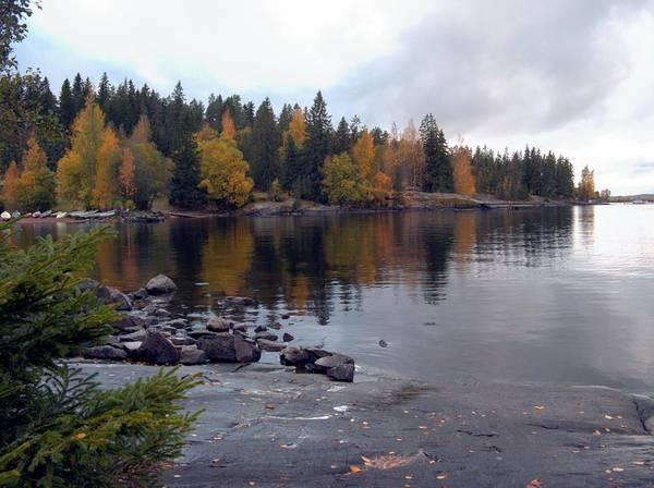 Photograph - Autumn View 2 by Sami Tiainen