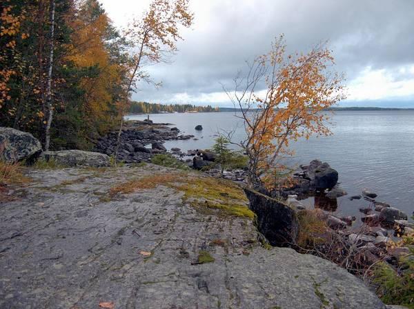 Photograph - Autumn View 4 by Sami Tiainen