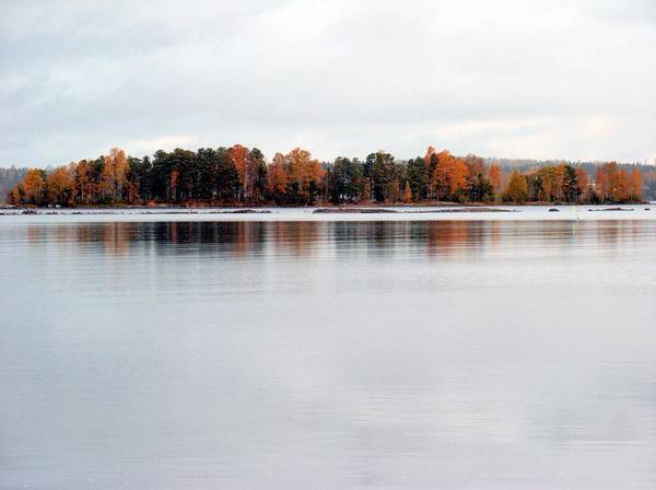 Photograph - Autumn View 7 by Sami Tiainen