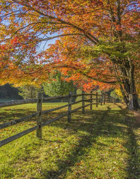 Wall Art - Photograph - Autumn Walk by Dave Sandt