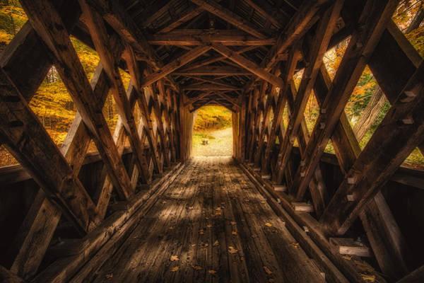 Photograph - Autumn Walk by Robert Clifford