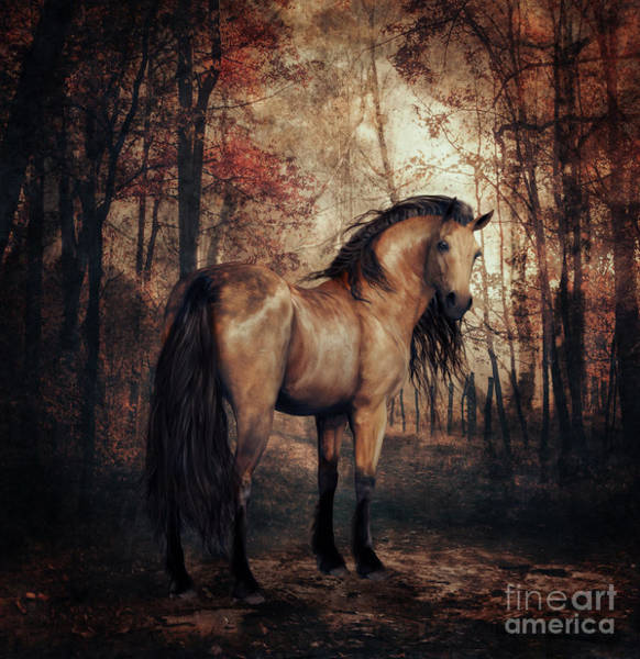 Beautiful Horse Wall Art - Digital Art - Autumn Walk by Shanina Conway