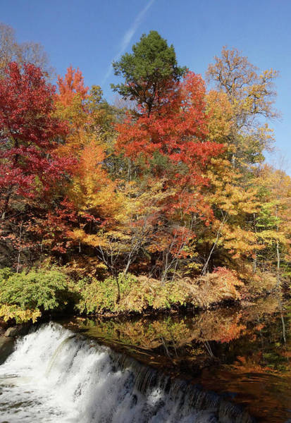 Photograph - Autumn Water Falls by Cate Franklyn