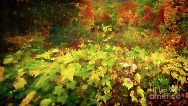 Autumn Watercolor Art Print